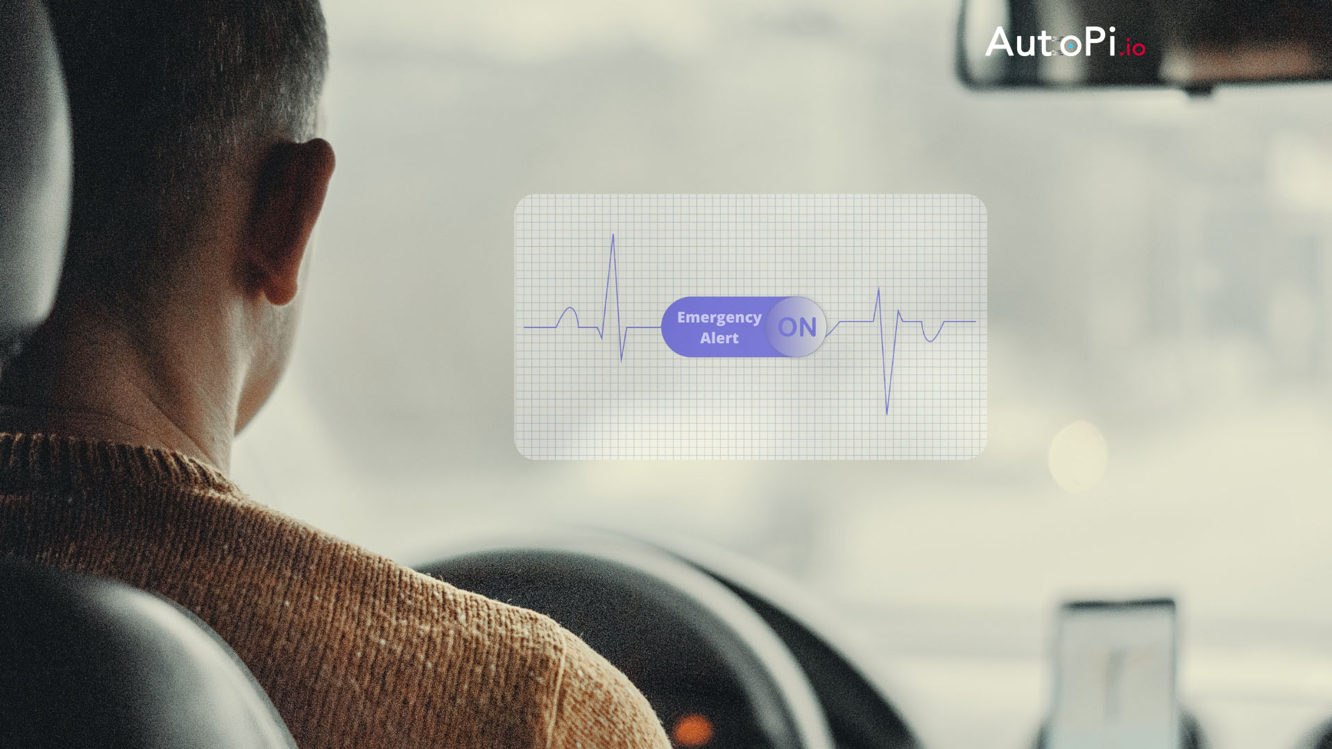 Monitoring Driver's Health Status in Real-Time With Medical Scanner